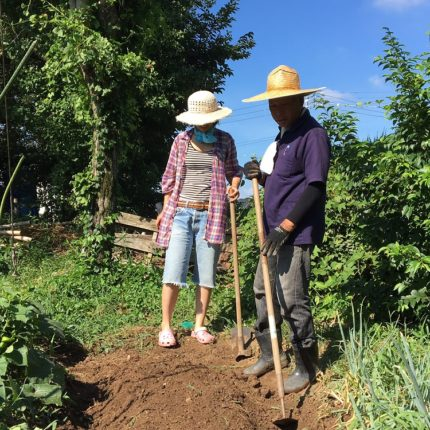Hatake (Gardening) Project